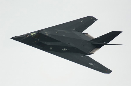 F-117 Nighthawk (Stealth Fighter)