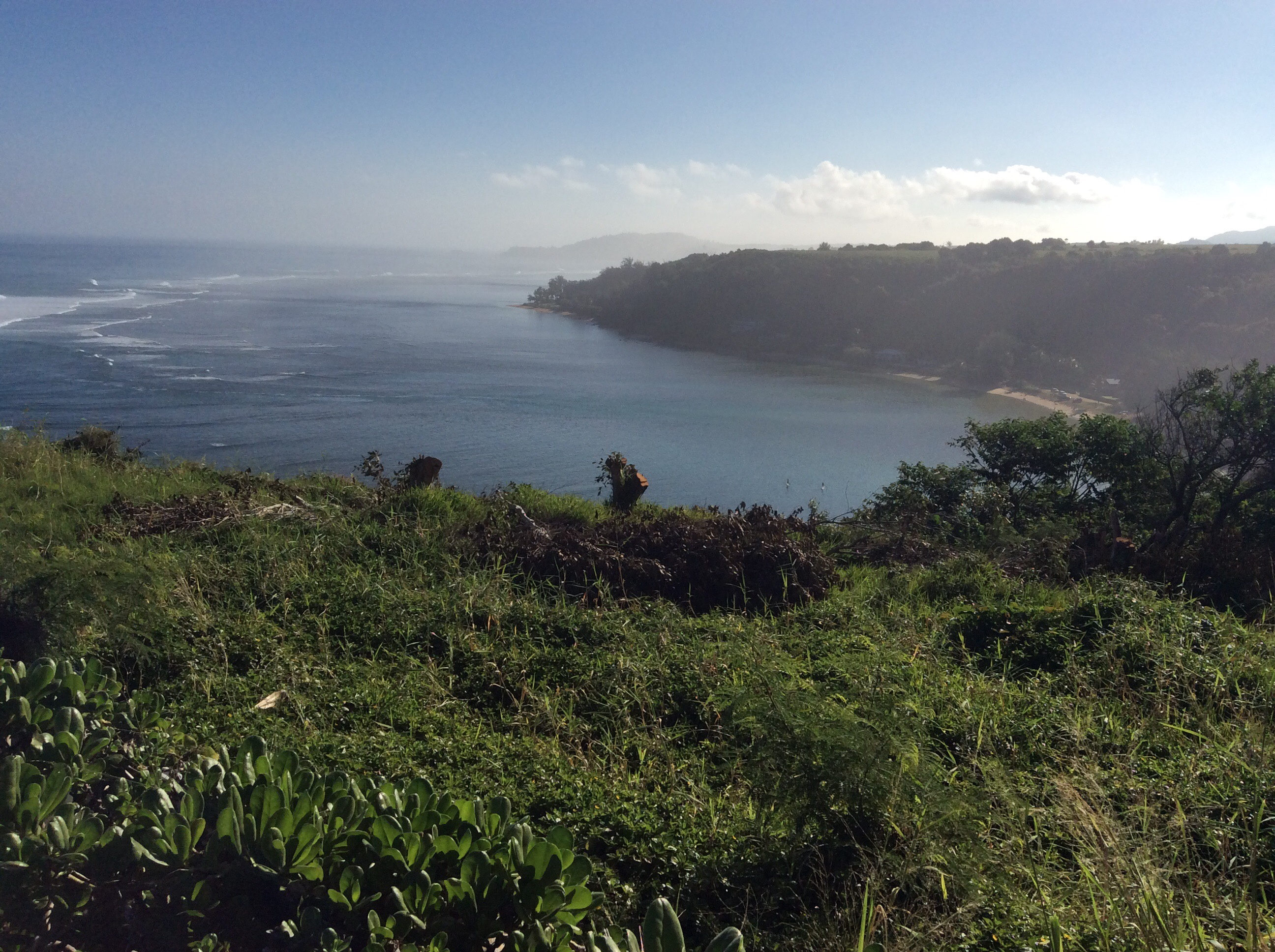A view looking out into a blue sky, a few clouds, deep blue ocean with a couple of white waves, and green foliage in the foreground.
