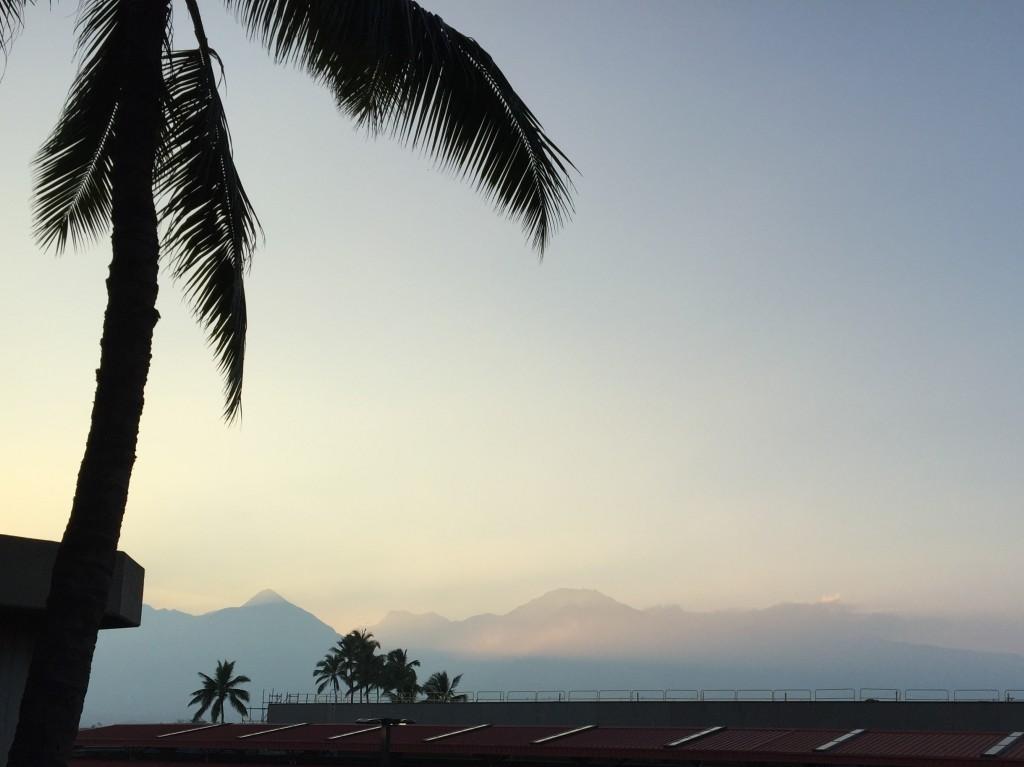 Maui Airport Scenery